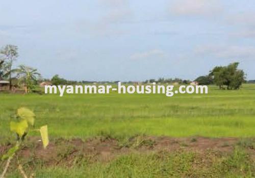 မြန်မာအိမ်ခြံမြေ -ခြံမြေနှင့် စက်ရုံဆက်စပ် ပိုင်ဆိုင်မှုများ property - No.1844 - N/A - view of the land