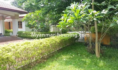Myanmar real estate - for rent property - No.4014 - Landed house for rent in Lawkanat Housing Haling! - lawn view