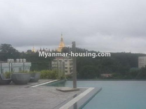 Myanmar real estate - for rent property - No.4240 - Condo room for rent in Bahan! - swimming pool view