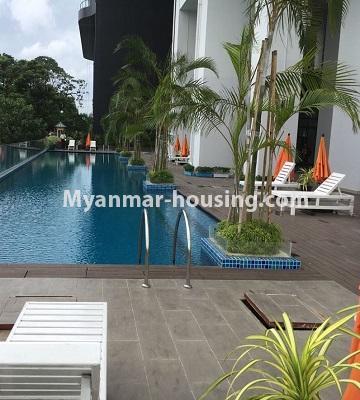 မြန်မာအိမ်ခြံမြေ - ငှားရန် property - No.4433 - မင်္ဂလာတောင်ညွန့် နေရာကောင်းတွင် ကန်သာယာ လူနေကွန်ဒိုခန်း ငှားရန်ရှိသည်။swimming pool