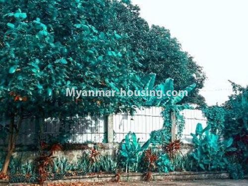မြန်မာအိမ်ခြံမြေ - ငှားရန် property - No.4535 - မရမ်းကုန်း ၈မိုင်တွင် အိပ်ခန်းရှစ်ခန်းပါသော လုံးချင်းအိမ် ငှားရန်ရှိသည်။compound view