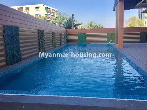 Myanmar real estate - for rent property - No.4741 - Furnished 2BHK Royal Thukha condominium for rent in Hlaing! - another view of swimming pool