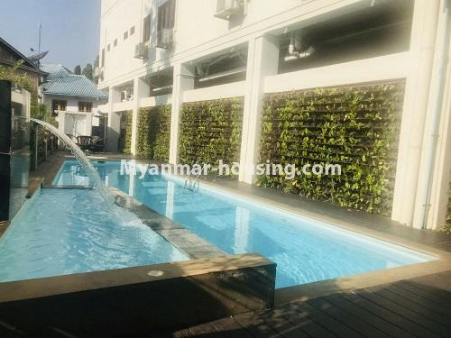 Myanmar real estate - for rent property - No.4742 - One bedroom serviced apartment for rent in Bahan! - swimming pool view