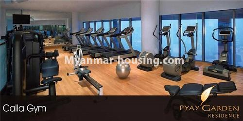 Myanmar real estate - for rent property - No.4811 - Luxurious Pyay Garden Residential Room for rent in Sanchaung Township. - gym room view