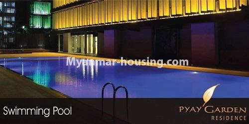 Myanmar real estate - for rent property - No.4811 - Luxurious Pyay Garden Residential Room for rent in Sanchaung Township. - swimming pool view