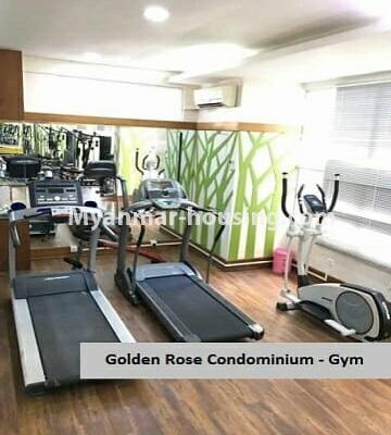 မြန်မာအိမ်ခြံမြေ - ရောင်းမည် property - No.3357 - အလုံ ရွေှနှင့်ဆီကွန်ဒိုတွင် အခန်းရောင်းရန် ရှိသည်။ - gym room view